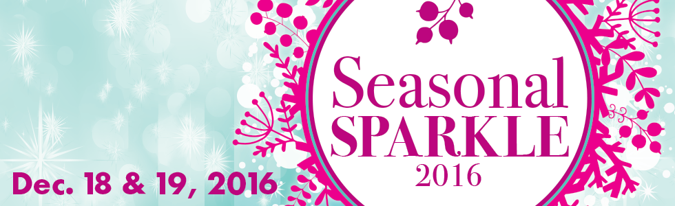 SEASONAL-SPARKLE-Web-Banner